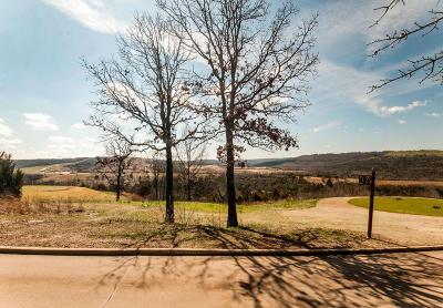 Branson Creek, Branson Creek/Fieldstone, Branson Creek/Fieldstone Bluffs, Branson Creek/Iron Ridge, Branson Creek/Oak Knoll Residential Lots & Land For Sale: 213 Windy Ridge Drive