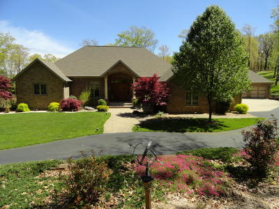 Single Family Home For Sale: 1031 Eaglecrest Road