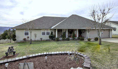 Branson Single Family Home For Sale: 738 Skyview Drive