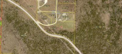 Branson West Residential Lots & Land For Sale: Lot 9 Chateau Lane