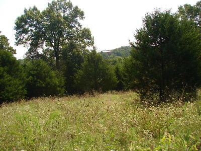 Blue Eye Residential Lots & Land For Sale: Tbd State Highway 86 Road