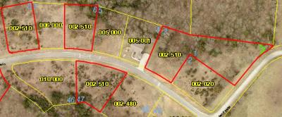 Residential Lots & Land For Sale: Lot 8 Hanging Branch Ridge