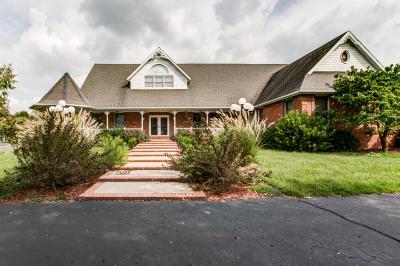 Monett Single Family Home For Sale: 2176 Farm Road 1063
