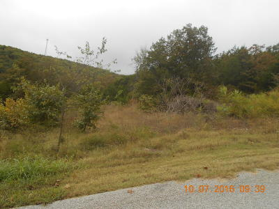 Hollister MO Residential Lots & Land For Sale: $15,000