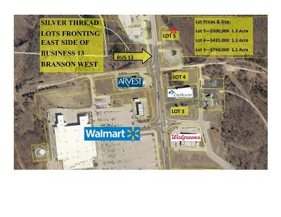 Branson West MO Commercial For Sale: $300,000