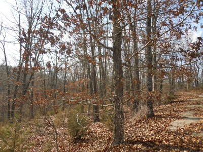 Mills Hollow Estates Residential Lots & Land For Sale: Lt 11 Mills Hollow Road