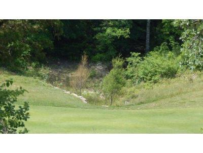 Branson MO Residential Lots & Land For Sale: $79,000