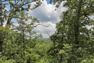 Branson West Residential Lots & Land For Sale: Lot 300 Forest Lake 7th Add