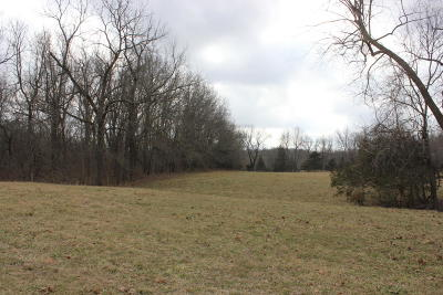 Goodman MO Residential Lots & Land For Sale: $175,000