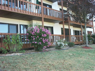 Stone County, Taney County Condo/Townhouse For Sale: 1705 Paradise Landing #7