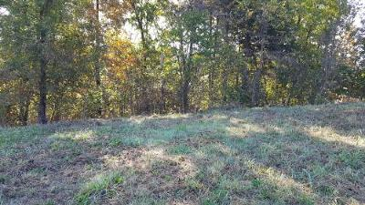 Springfield Residential Lots & Land For Sale: 3336 West Bluffview Street