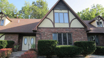 Willard Single Family Home For Sale: 7996 North Beef Lane
