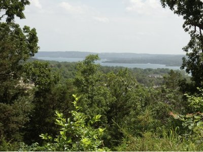 Stone County, Taney County Residential Lots & Land For Sale: Tbd Canyon Parkway