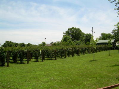 Kissee Mills Farm For Sale: 780 Hwy O