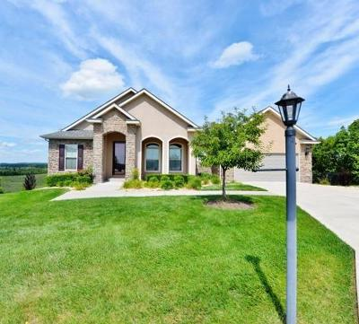 Hollister MO Single Family Home For Sale: $299,900