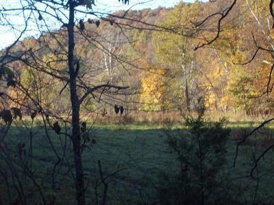 Highlandville Residential Lots & Land For Sale: Hwy 65 & Woods Fork