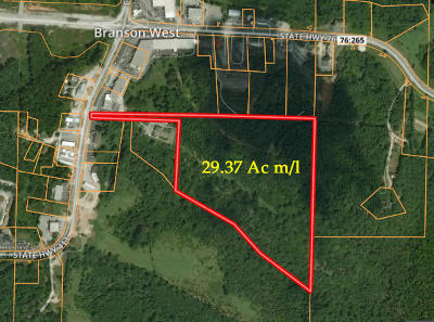 Branson West Residential Lots & Land For Sale: Tbd Business Highway 13