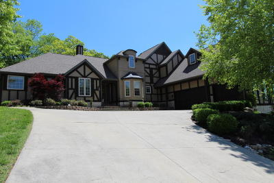 Branson Single Family Home For Sale: 150 South Drive