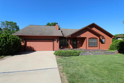 Branson West, Reeds Spring Single Family Home For Sale: 336 Grandview Hills Circle
