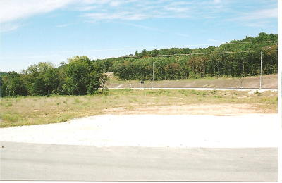Residential Lots & Land For Sale: Tbd Hwy 90 Highway #Lot 2