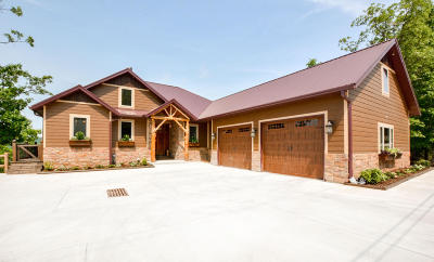 Branson Single Family Home For Sale: 239 Buzan Lane