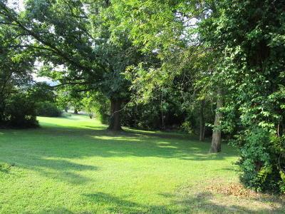 Branson Residential Lots & Land For Sale: 514 Ellison Avenue
