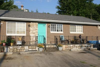 Ozark Single Family Home For Sale: 104 South 2nd Avenue