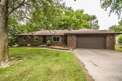 Marionville Single Family Home For Sale: 19293 Lawrence 1240