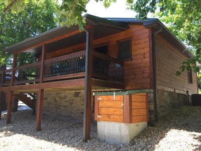 Branson Single Family Home For Sale: Cabin 24 Cave Ln
