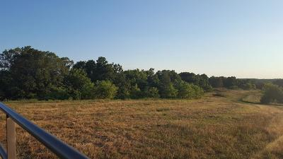 Pineville MO Residential Lots & Land For Sale: $31,900