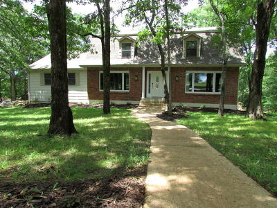 Branson MO Single Family Home For Sale: $295,000