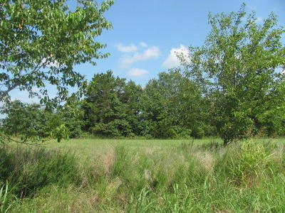 Powersite Residential Lots & Land For Sale: Lookout Road