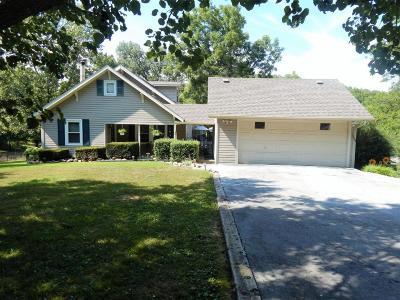 Fordland Single Family Home For Sale: 1289 Osceola Road