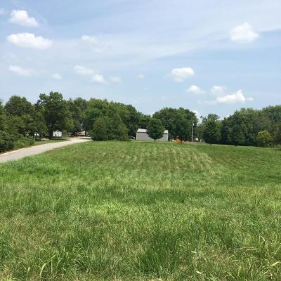 Taneyville Residential Lots & Land For Sale: Tbd Central Ave