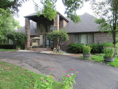 Branson Single Family Home For Sale: 298 Sunny Brook Drive