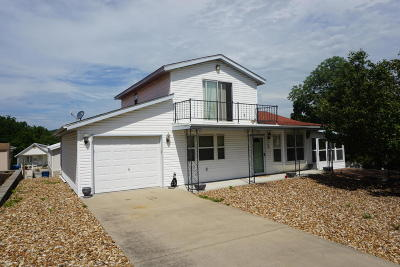 Branson Single Family Home For Sale: 199 Star View Drive