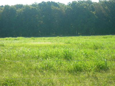 Residential Lots & Land Sold: Tbd Hobbs Road