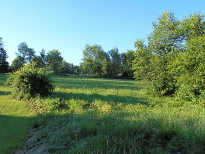 Mountain View MO Residential Lots & Land For Sale: $17,500
