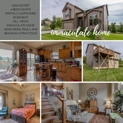 Branson Single Family Home For Sale: 180 Country Ridge Way