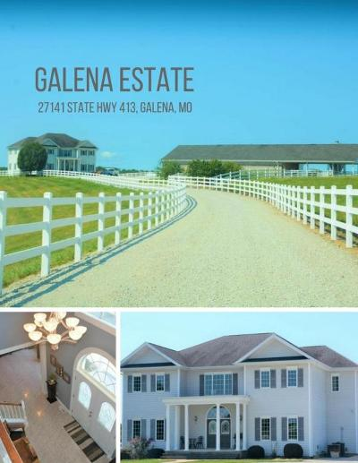 Galena Single Family Home For Sale: 27141 State Hwy 413
