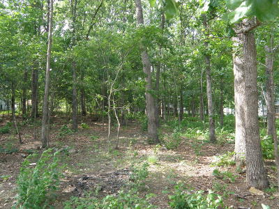 Forsyth Residential Lots & Land For Sale: 0.34 Ac Dickens Circle