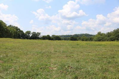 Residential Lots & Land For Sale: Tbd Little Missouri Road