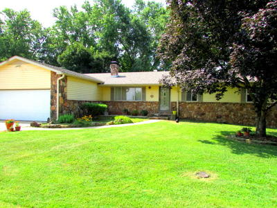 Forsyth Single Family Home For Sale: 225 Elim Street