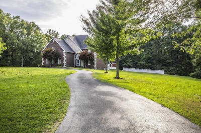 Rogersville Single Family Home For Sale: 353 Wilderness Road