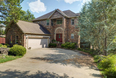 Branson Single Family Home For Sale: 252 Summerwood Drive