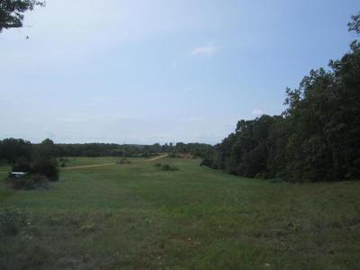 Reeds Spring Commercial For Sale: Highway 76 & Y