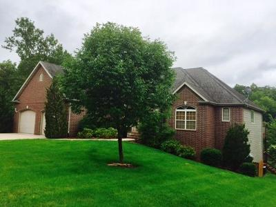 Branson West, Reeds Spring Single Family Home For Sale: 94 Ashwood Lane