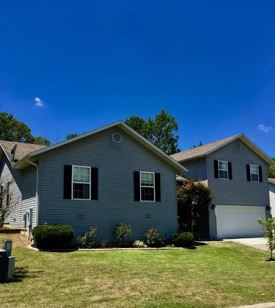 Forsyth Single Family Home For Sale: 395 Eagle Dr. Drive