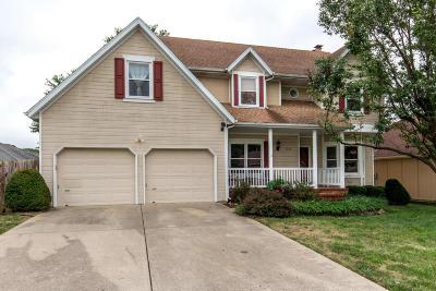 Springfield Single Family Home For Sale: 3856 South Lexington Court