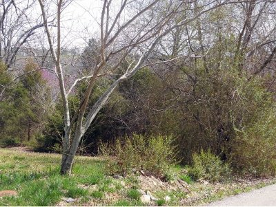 Rockaway Beach Residential Lots & Land For Sale: Tbd Redbud Avenue